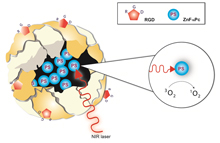 Ferritin-based nanoplatforms for imaging and drug delivery